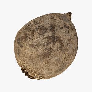 beet root 01 raw 3D