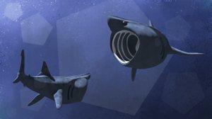 stylized basking shark model