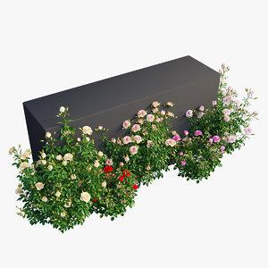 3D plant rose set model