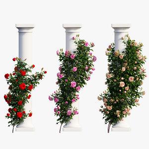 3D rose plant set 10