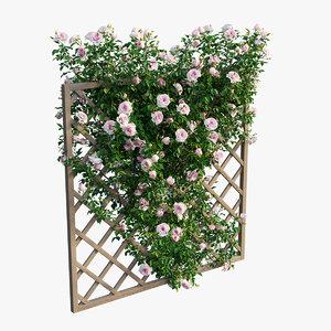3D rose plant set 12 model