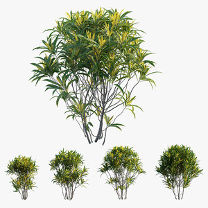 plant set 08 3D model