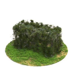 v-ray 3D model