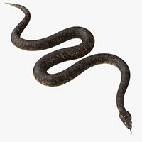 Crawling Snake - Animated Game Asset