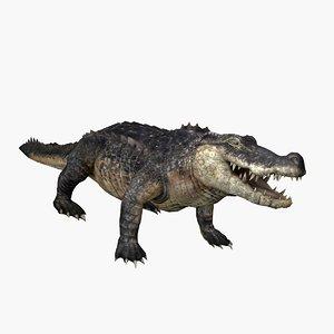 crocodile rigged walk 3D