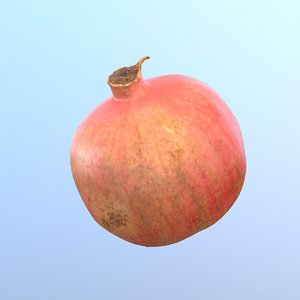 photorealistic pomegranate fruit modeled model