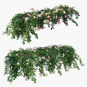 3D rose plant set 29 model