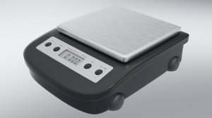 scientific scale model