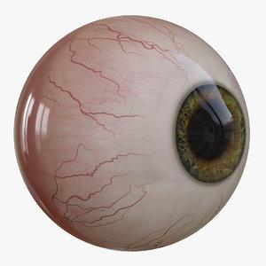 3D eye v-ray