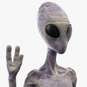 3D humanoid alien rigged model