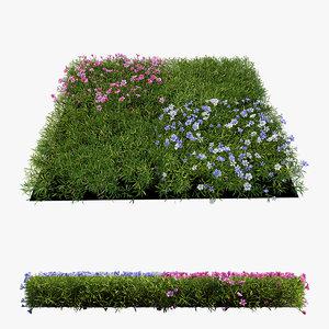 3D model plant flower set 06