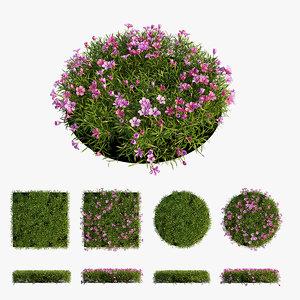 3D plant flower set 05