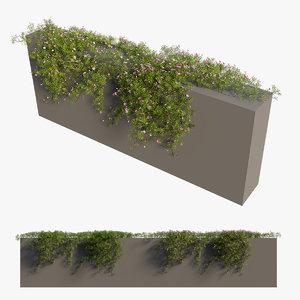 plant flower set 08 3D model
