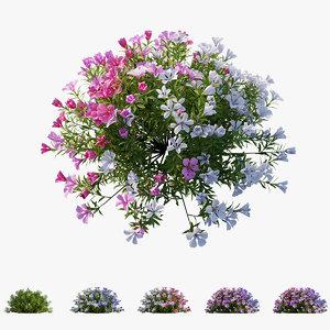 3D model plant flower set 12