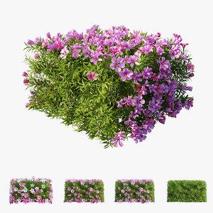 3D plant flower set 13