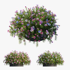 3D flower set 16
