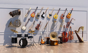musical instrument electric guitar model
