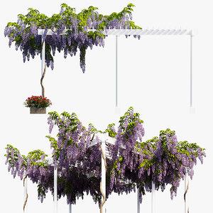 3D model wisterial tree