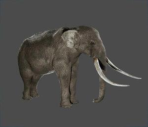 3D elephant ready games model