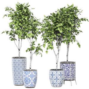 3D flower pack 147 birch trees model