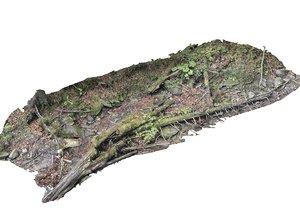 3D forest asset hd