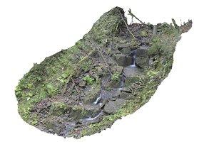 forest asset hd model