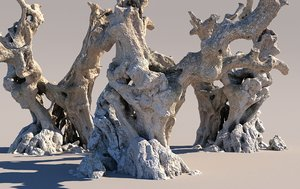 thousand-year-old olive tree 3D