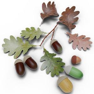 acorns leaf 3D