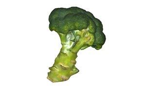 broccoli scan scanner 3D model