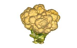3D cauliflower scan