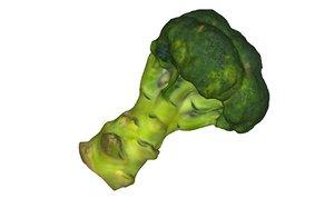 3D half broccoli