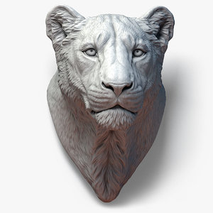 lioness animal head sculpture model