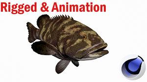 grouper fish model