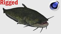 Catfish Rigged