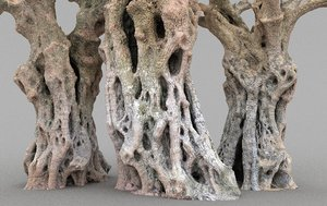 3D thousand-year-old olive tree
