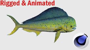 mahi fish 3D model