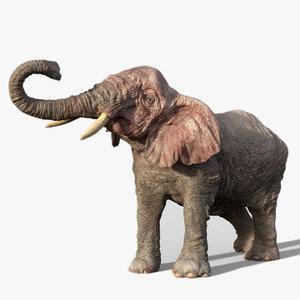3D elephant rigged