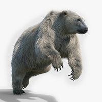 Polar bear RIGGED FUR