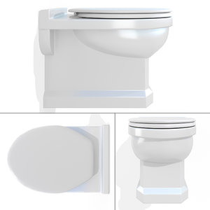 3D wall-hung toilet caprigo model