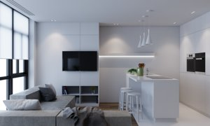 apartment white model