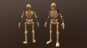 3D soldier skeleton
