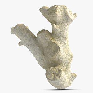 3d coral 4