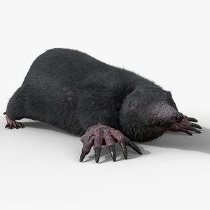 mole rigged fur model
