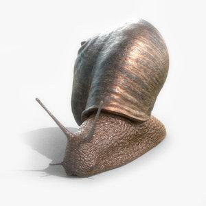 3D model snail slug animation