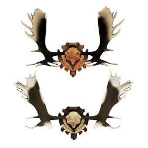 elk antlers 3D model