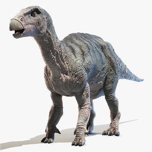 3D iguanodon model