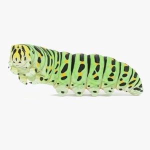 rigged swallowtail caterpillar 3D model