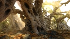 3D magic old forest