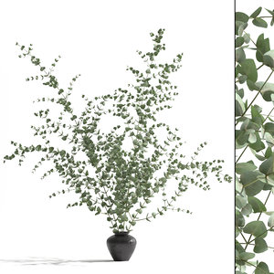 3D model vase eucalyptus