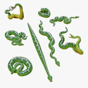 emerald tree boa animation model